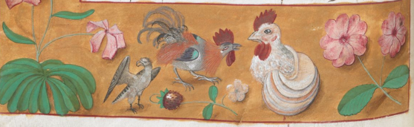 Royal 19 C VIII f 32r chickens